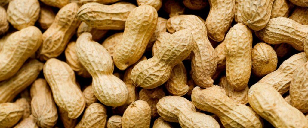 Mesin Pengupas Kacang Tanah, Alat Pengupas Kacang Tanah