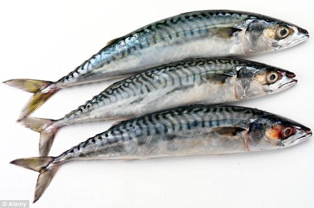 Cara Membuat Ikan Tengiri