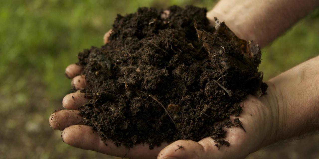 cara membuat kompos organik